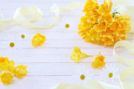 フリージア花